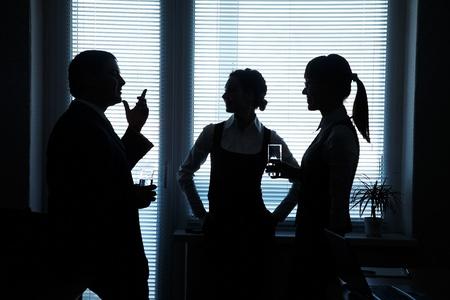 Silhouetten von Gesch�ftspartnern diskutieren gegen das Fenster im B�ro Lizenzfreie Bilder