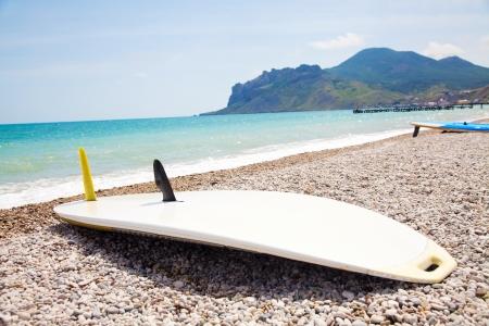 keel: vindserfina board lies on the beach keel up