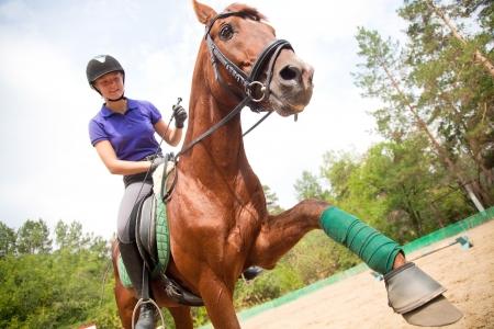 Junge Frau Dressur das braune Pferd