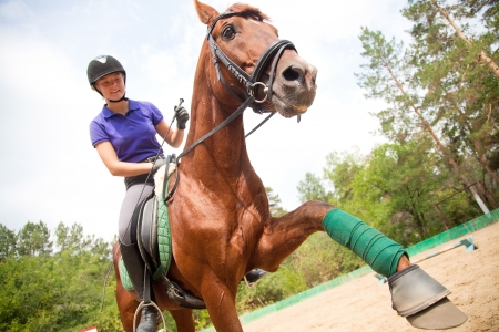 Young  woman  dressage the brown horse photo