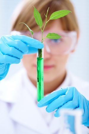 Woman scientist holding a test tube with plant Stock Photo - 17510176