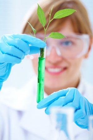 herbal knowledge: Woman scientist holding a test tube with plant Stock Photo