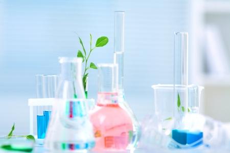 sustancias toxicas: Cristalería de laboratorio con líquido diferente color y con una planta de brotes