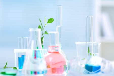 Different laboratory glassware with color liquid and with  shoots plant Stock Photo - 17459764
