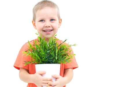 indoor plants: Portrait of funny little boy with window plants