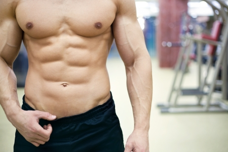muscular male body in gym Stock Photo - 19754481