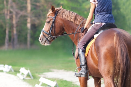 horseback riding: young woman rider and horse in training place Stock Photo