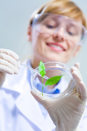 Woman scientist holding a test tube with plant. Ecology