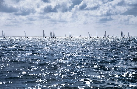 sailing boat: beautiful landscape of the sea with many sails on the horizon