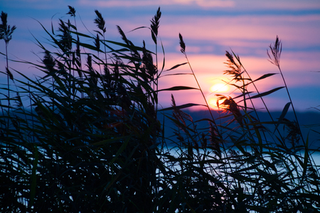 river: Silhouette of rolling grass against a red sunset Stock Photo