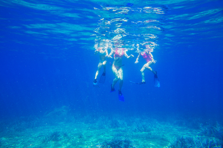 family dives into the sea in fins. View from under the water. Unrecognizable Stock Photo