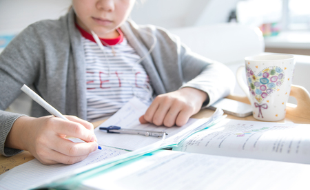 teenager schoolgirl  doing homework lessons at home Banco de Imagens
