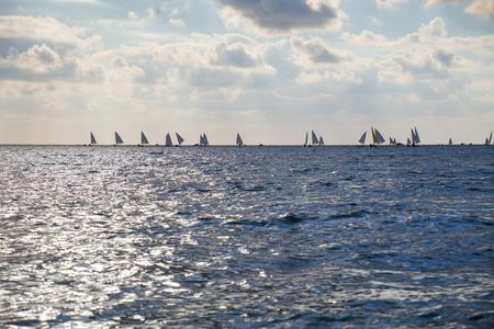 lBeautiful landscape with saling regatta in sunset