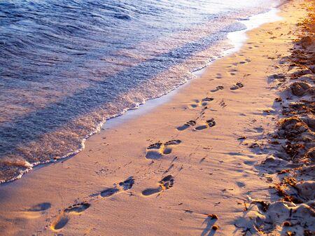 human footprints on the sandy beach of the sea