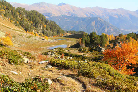 Beautiful landscape of autumn forest covering low mountains