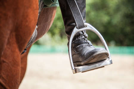 close-up of a rider's leg on a stirrup on a horse