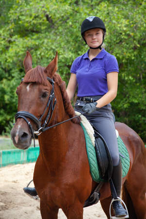 Portrait of young horsewoman on red horse