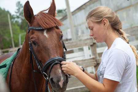 Young girl caring for a horse on a farm