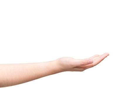 recieve: Human hand with open palm ready to recieve on light gray background