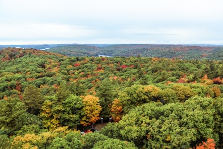 pic nic: Landscape view of the entire Algonquin National Park during autumn