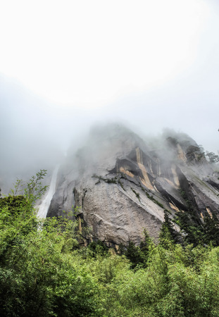 Mountain ranges with trees during a foggy day