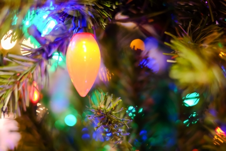 Christmas decorations and lights hanging on a Christmas tree photo