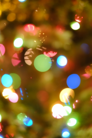 christmas lights display: Abstract holiday background with blurred Christmas and new year lights on tree