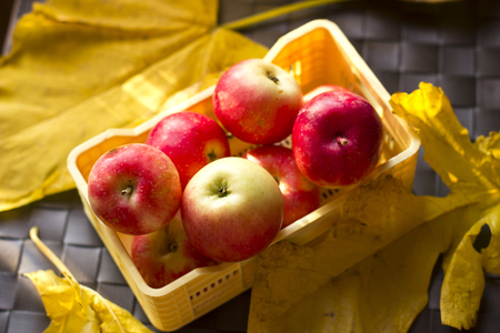 Autumn red and yellow apples in a plastic box on leaves