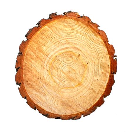 Taglio a sega circolare di tronchi di pino. Sfondo in legno