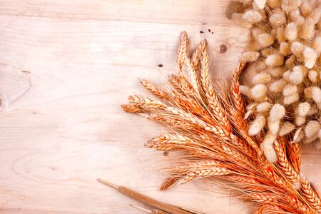 Dried grain ears and reeds on wooden table. Autumn harvest of bread Stok Fotoğraf