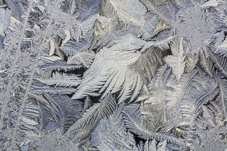 frost bound: The abstract frosty pattern on glass
