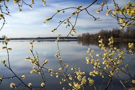spring Foto de archivo