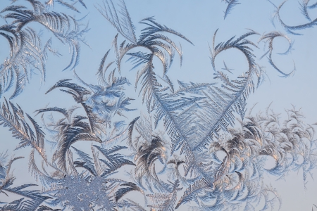 The abstract frosty pattern on glass Stock Photo - 16934701