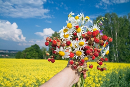 bouquet from berries of wild strawberry and field camomiles photo