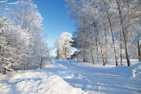 snow tires: winter landscape with the road Stock Photo