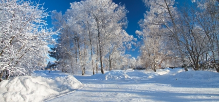 tranquil scene on urban scene: winter landscape with the village Stock Photo