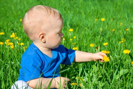 the small child on a spring meadow photo