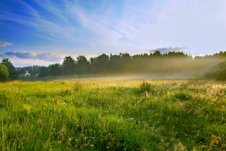 summer sunrise over the rural areas and a meadow