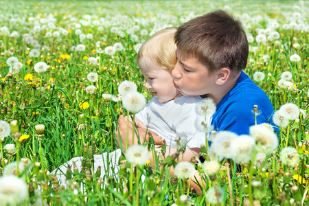 two boys play on a summer meadow photo