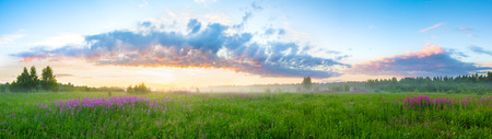 summer rural landscape with sunrise panorama photo
