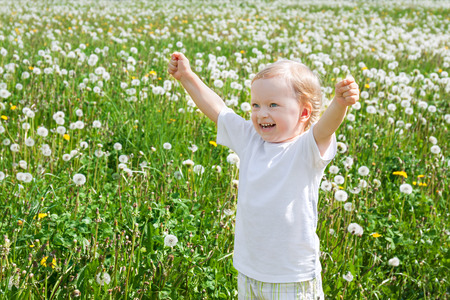 small child the boy plays on a green meadow with dandelions Banque d'images