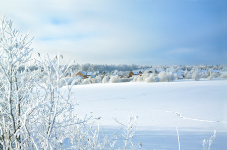 beautiful rural winter landscape with the village and the forest photo