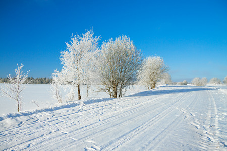 winter  rural landscape with the road the forest and the blue sky