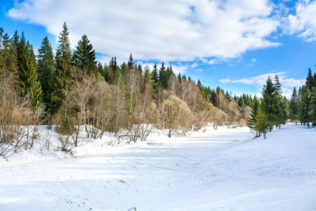 beautiful winter  landscape with the river and the forest photo