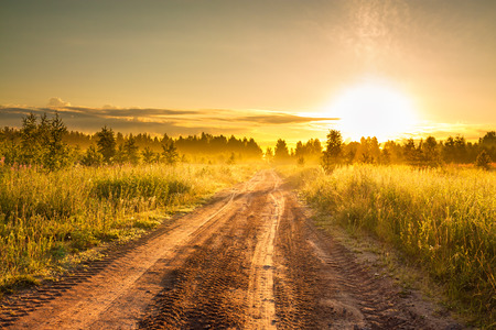 the summer rural landscape with sunrise and the road