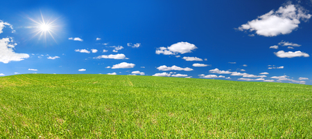 beautiful spring rural landscape with field and blue sky, a panorama. agricultural field panoramic view. agriculture panorama