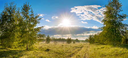 beautiful rural summer landscape with road, a meadow,forest and fog, panorama. panoramic view of blue sky with sun, clouds and sunrise. sunbeams morning