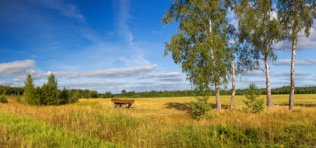 autumn rural landscape panorama, field, forest, blue sky and white clouds. autumn day harvest. linen fibre,a cart on a field loaded with flax Stock Photo