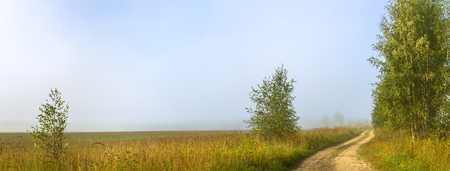 non: rural autumn landscape panorama with the road, fog,field, trees and birches. panoramic view