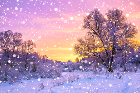 beautiful winter landscape with forest, trees and sunrise. winterly morning of a new day. purple winter landscape with sunset